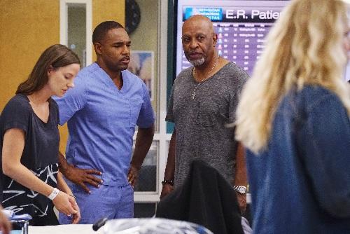 Grey's Anatomy' Episode 13.3 Photos: Can Amelia Help Meredith and ...