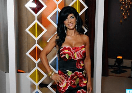 NJ Housewife Teresa Giudice to Teach 'How to Have it All' and Other Housewife Seminar Ideas