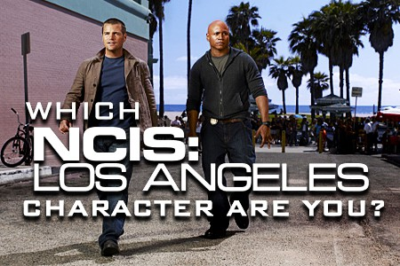 ncisla/whichncisla.jpg