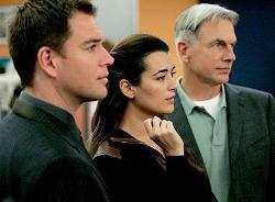 'NCIS' Reunion Recap: Can Gibbs Trust Ziva Again?